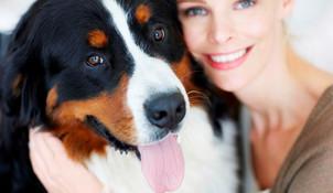 Hundehalter Haftpflichtversicherung